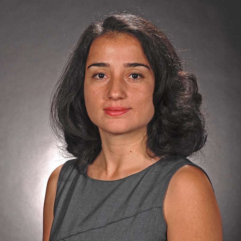 Clinical Assistant Professor Aslihan Karatas